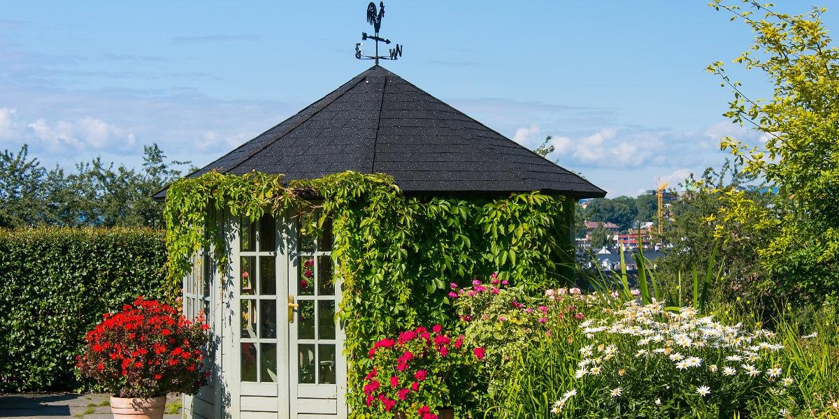 abri jardin shingles