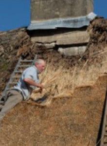 entretien toiture en roseau