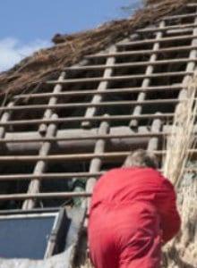 toiture en roseau construction ouverte